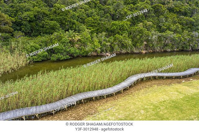 Reeds sway gently in the light breeze along the banks of the Piesangs River. With a winding riverside boardwalk to enable a closer look at the bird life...