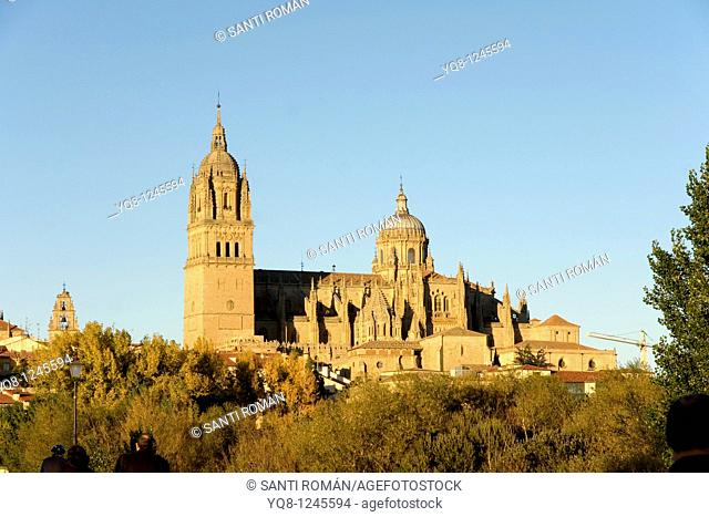 Roman bridge and cathedral, Salamanca. Castilla-Leon, Spain