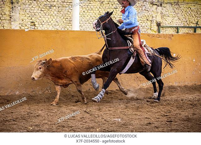 A charreada Mexican rodeo at the Lienzo Charro Zermeno, Guadalajara, Jalisco, Mexico