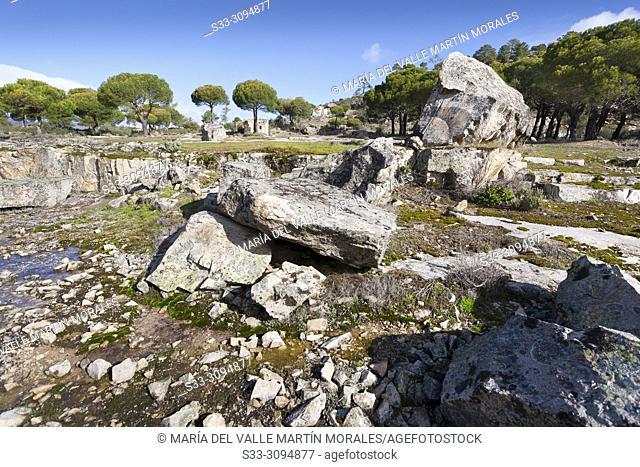 Pines and granite in The Piquillo. Cadalso de los Vidrios. Madrid. Spain