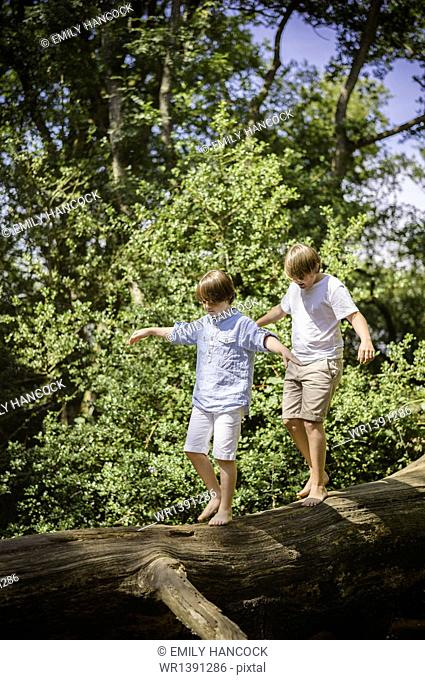 Two boys camping in the New Forest. Walking along a log above the water, balancing with their arms outstretched