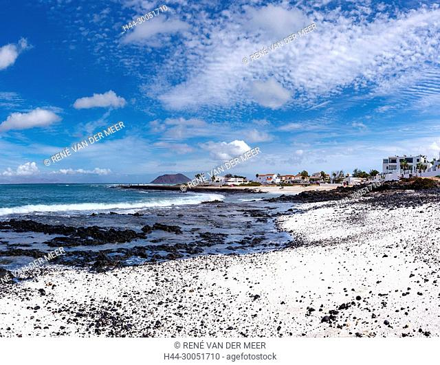 The coral beach Playa Vista Lobos, Corralejo, Spain Spain