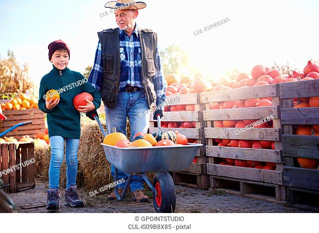 Farmer and grandson at pumpkin farm