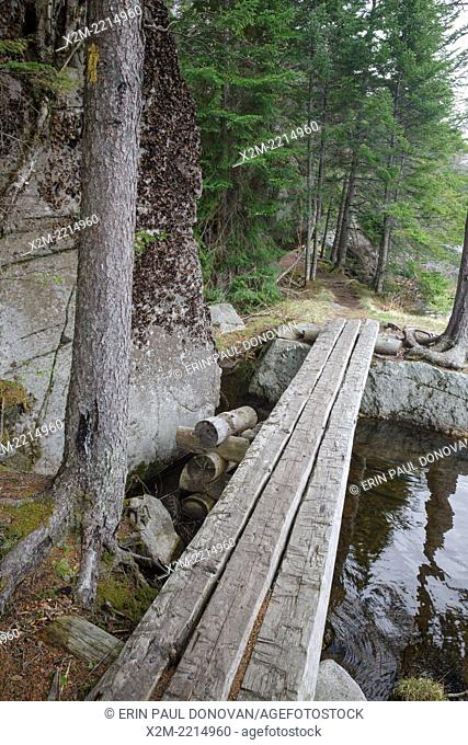 Saco Lake Trail in Crawford Notch State Park of New Hampshire USA