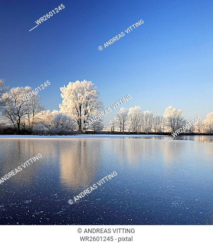 With hoarfrost covered trees at a half frozen lake, Nature Park Unteres Saaletal, Saalekreis district, Saxony Anhalt, Germany