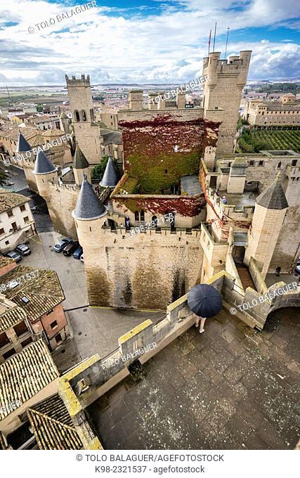 castillo palacio de Olite,comunidad foral de Navarra, Spain