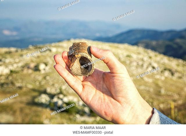 Greece, Peloponnese, Arcadia, Lykaion, hand holding find of a vase at the antique excavation site at mountain Profitis Ilias