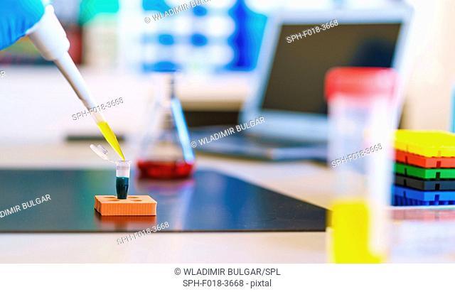 Micropipette and eppendorf tube