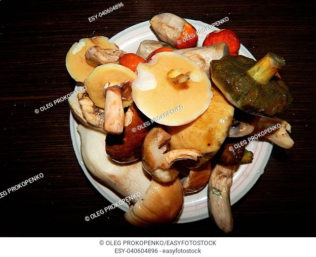 Collection and preparation of autumn edible mushrooms