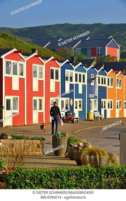 Man walking dog along Hummerbuden, colorful lobster shacks, Helgoland, North Sea, Schleswig-Holstein, Germany