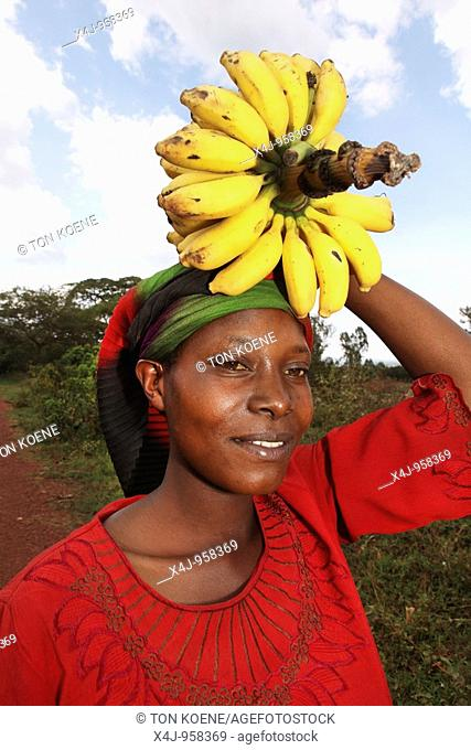 agriculture is the main source of income for burundi people in rural areas  Not only beans, mais, pineapples, rice, and bananas grow well