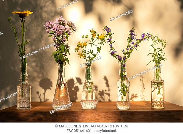 Five glass bottles with calendula, oregano, St John's wort, hyssop and mountain savory