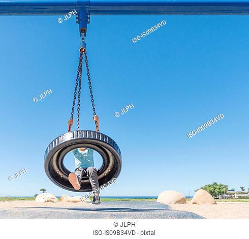 Boy on tyre swing