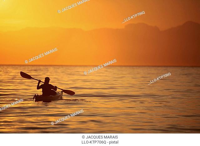 Silhouette of a Woman in a Sea Kayak at Sunset  Western Cape Province, South Africa