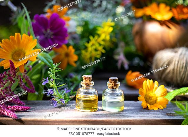 Bottles of essential oil with fresh blooming hyssop, calendula and other medicinal herbs