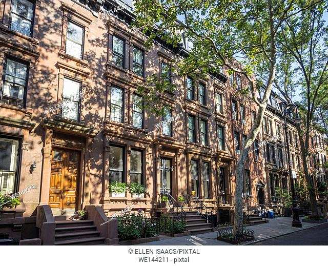 Lovely brownstone homes shaded by trees in affluent residential neighborhood in Brooklyn Heights, New York
