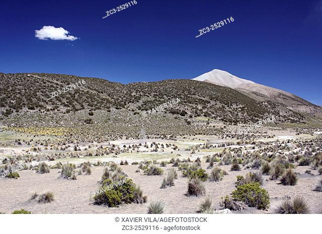 Landscape of the National park of Sajama, Altiplano, Bolivia