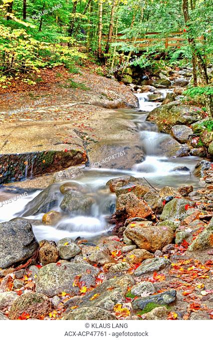 Swift River, The Flume, White Mountains, New Hampshire, United States of America