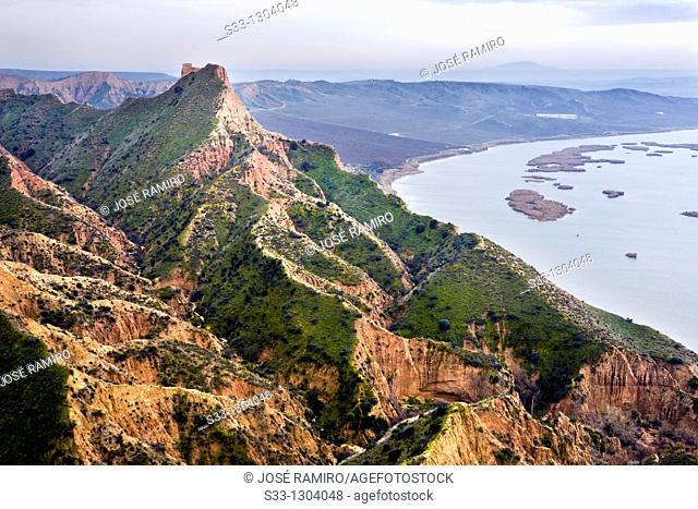 Castrejón gullys and  Tajo river. Toledo province, Castile-La Mancha, Spain