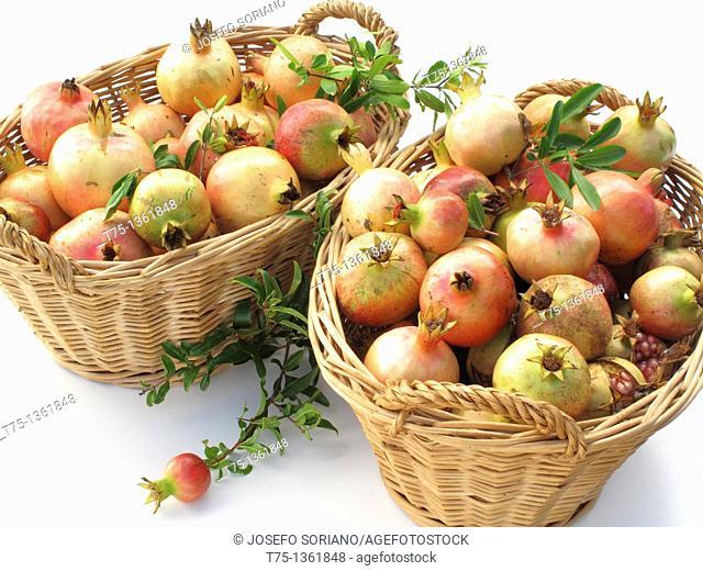 Pomegranates baskets