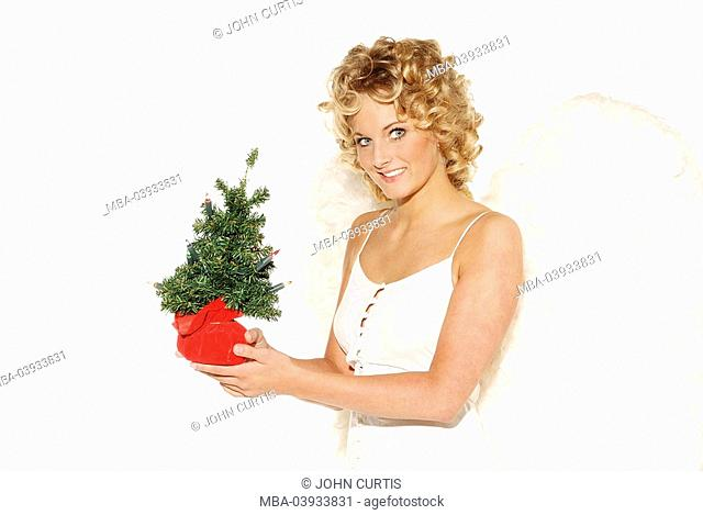 Woman, young, blond, angel wings, smiling, cheerfully, holding, little christmas-tree, small, semi-portrait, present christmas, people, christmas-angels, angels