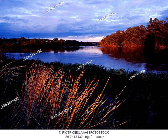 Sunset on the river Bug. Podlasie region. Poland