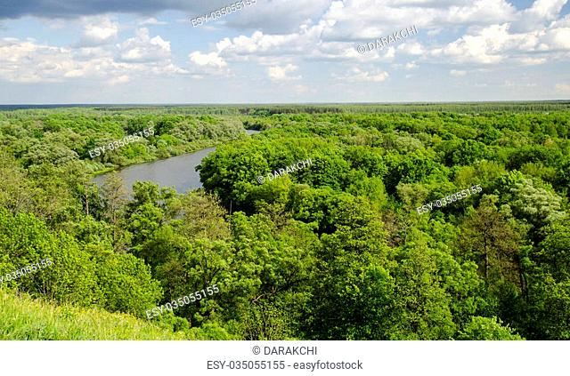 Green summer forest and picturesque river under deep blue sky with white clouds