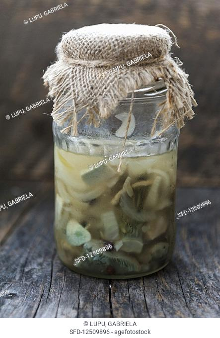 Pickled Lactarius piperatus mushrooms with onion, pepper and garlic in a jar