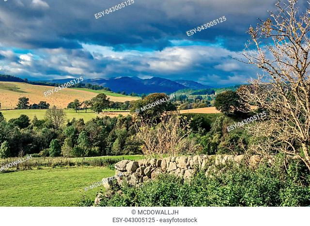 Scotland Over Dry Stone Walls Fields and Mountains. The stone wall trees and fields of Perthshire with the mountains in the distance