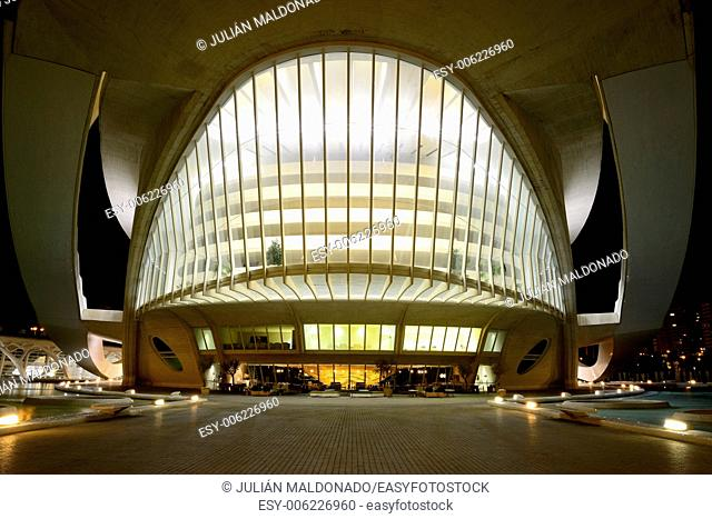 Detail of the Palace of Arts Reina Sofia. City of Arts and Sciences in Valencia, Spain
