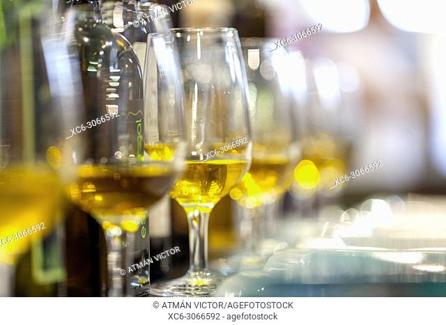 white wine glasses in a row. Gastrocanarias fair 2018. Santa Cruz de Tenerife