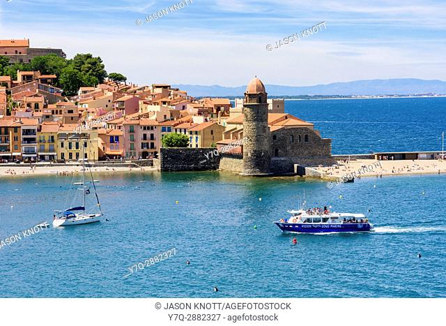 Tourist boat arrives in the old town of Collioure past the Notre Dame des Anges , Collioure, Côte Vermeille, Céret, Pyrénées-Orientales, Occitanie, France