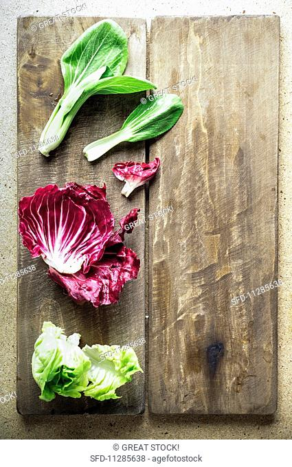 Bok choy, radicchio and lettuce