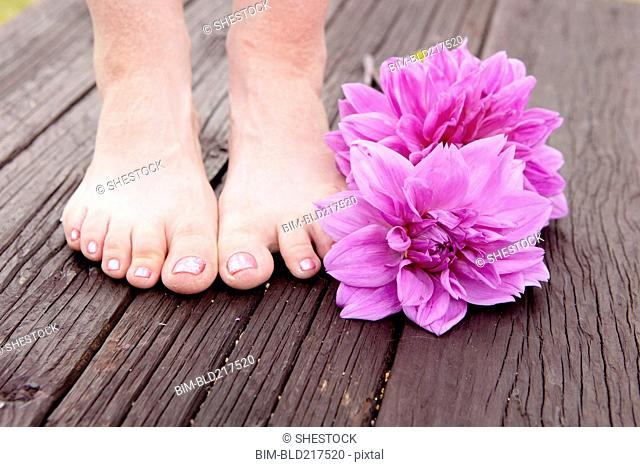 Close up of feet of mixed race woman and dahlia flowers