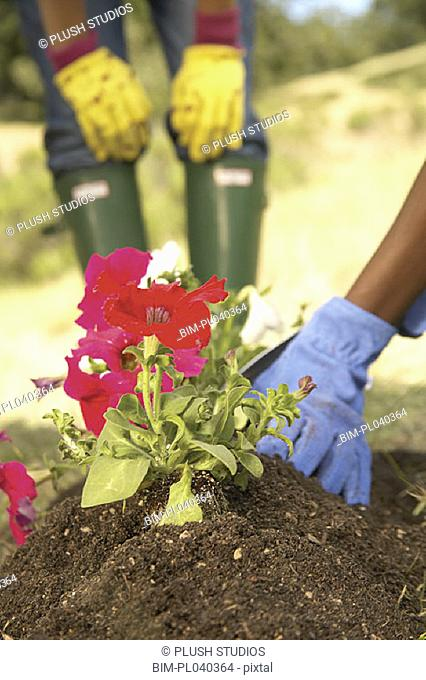 Low section of women gardening