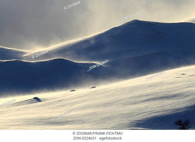 Winterlandschaft Dovrefjell Norwegen