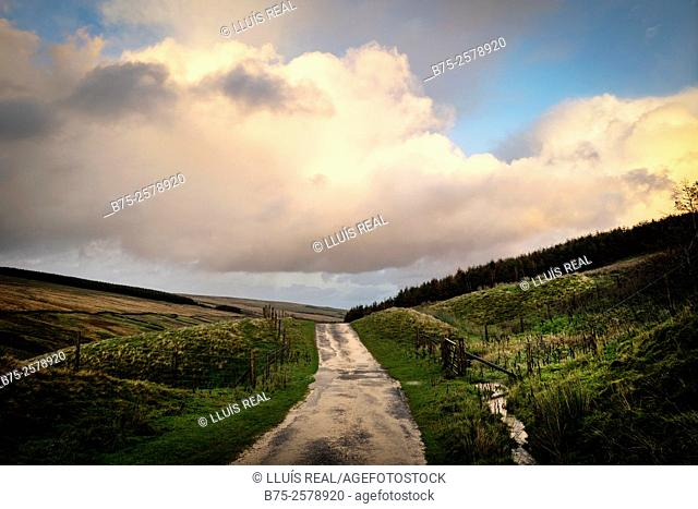Rural road with clouds in the background in North Yorkshire. Yorkshire Dales, England, UK, Europe