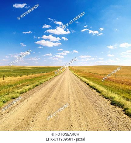 Country Dirt Road Between Fields