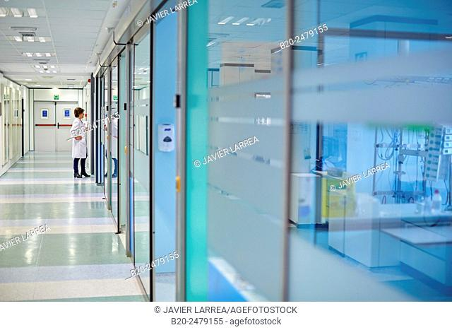 Intensive Care Unit ICU, Hospital Donostia, San Sebastian, Gipuzkoa, Basque Country, Spain