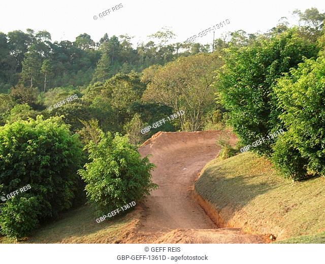 Vegetation, São Roque, São Paulo, Brazil