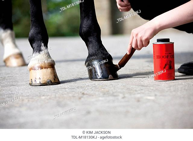 A woman applying hoof oil to a horse