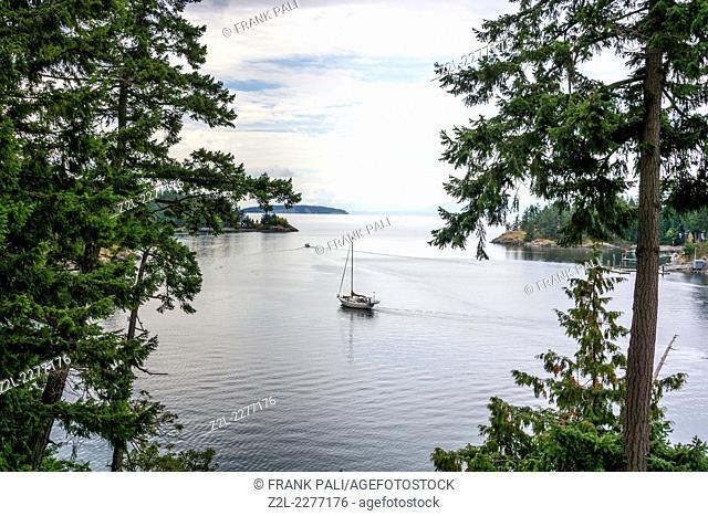 Saliboat leaving Francis Bay in Pender Harbour.British Columbia