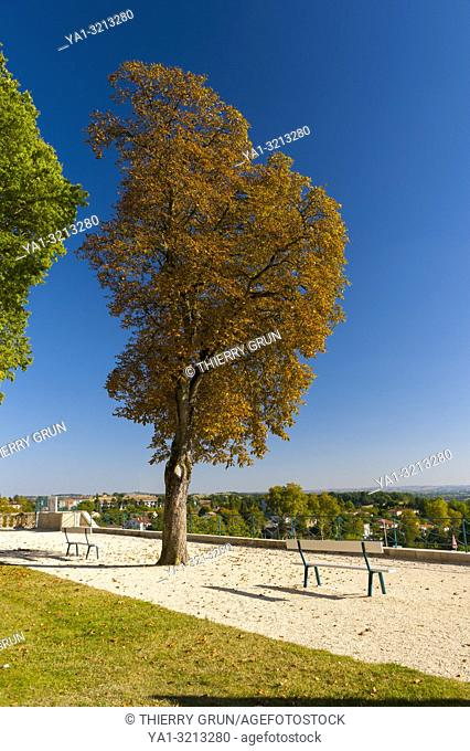 France, Gers (32), town of Lectoure on the way of Saint Jacques de Compostelle, jardin des marroniers, chesnut trees in autumn
