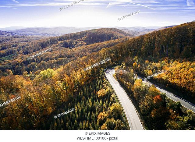 Austria, Lower Austria, Vienna Woods, Exelberg, aerial view on a sunny autumn day over a winding mountainroad