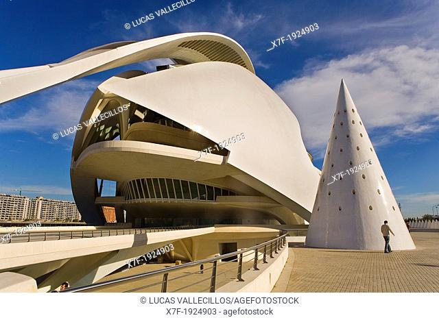 Palacio de las Artes Reina Sofía,City of Arts and Sciences by S  Calatrava  Valencia  Spain