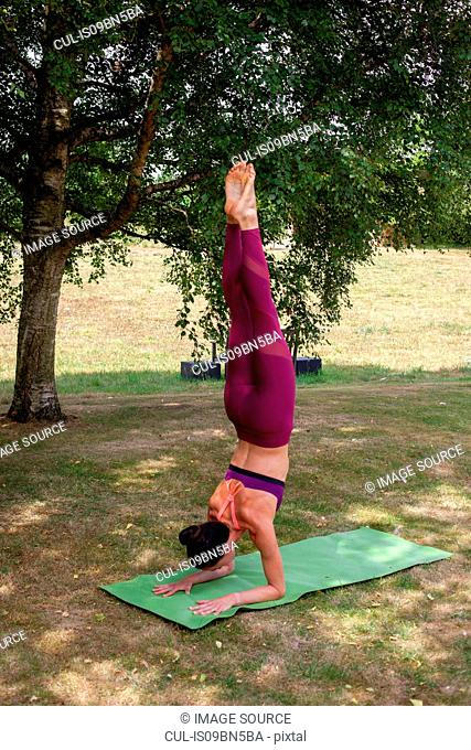 Woman practicing yoga in garden, forearm stand