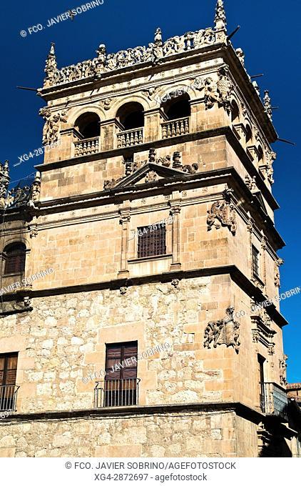 Torre del Palacio de Monterrey. Salamanca. Castilla-León. España. Europa