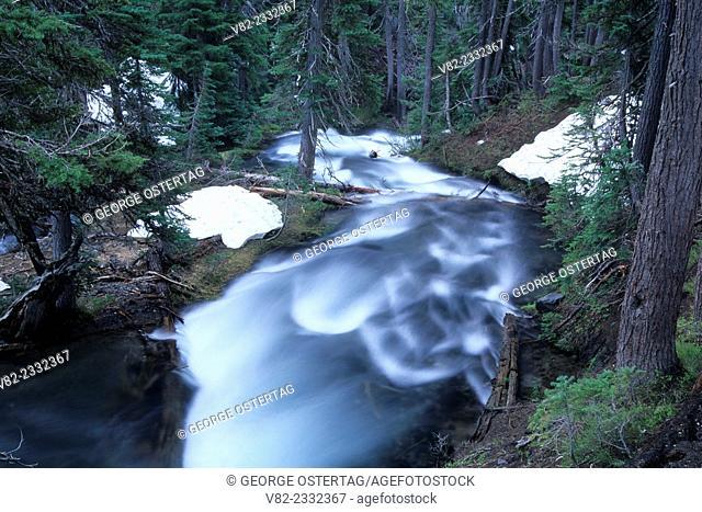 Fall Creek, Three Sisters Wilderness, Deschutes National Forest, Oregon