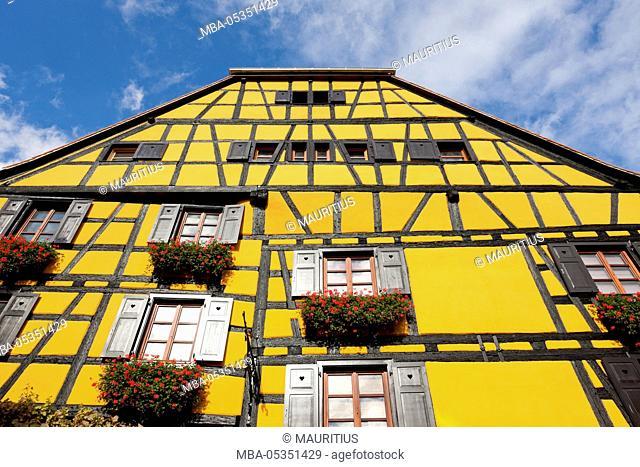Flower window in Riquewihr, Alsace