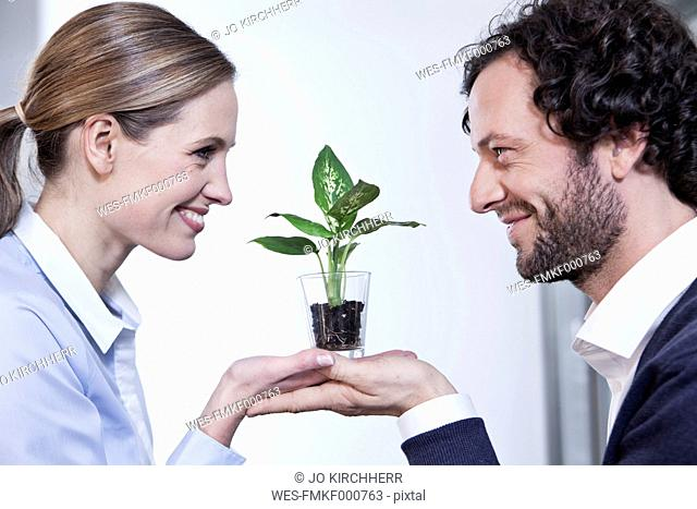 Germany, North Rhine Westphalia, Cologne, Businesscouple holding potted plant, smiling